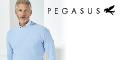 Pegasus Menswear discount